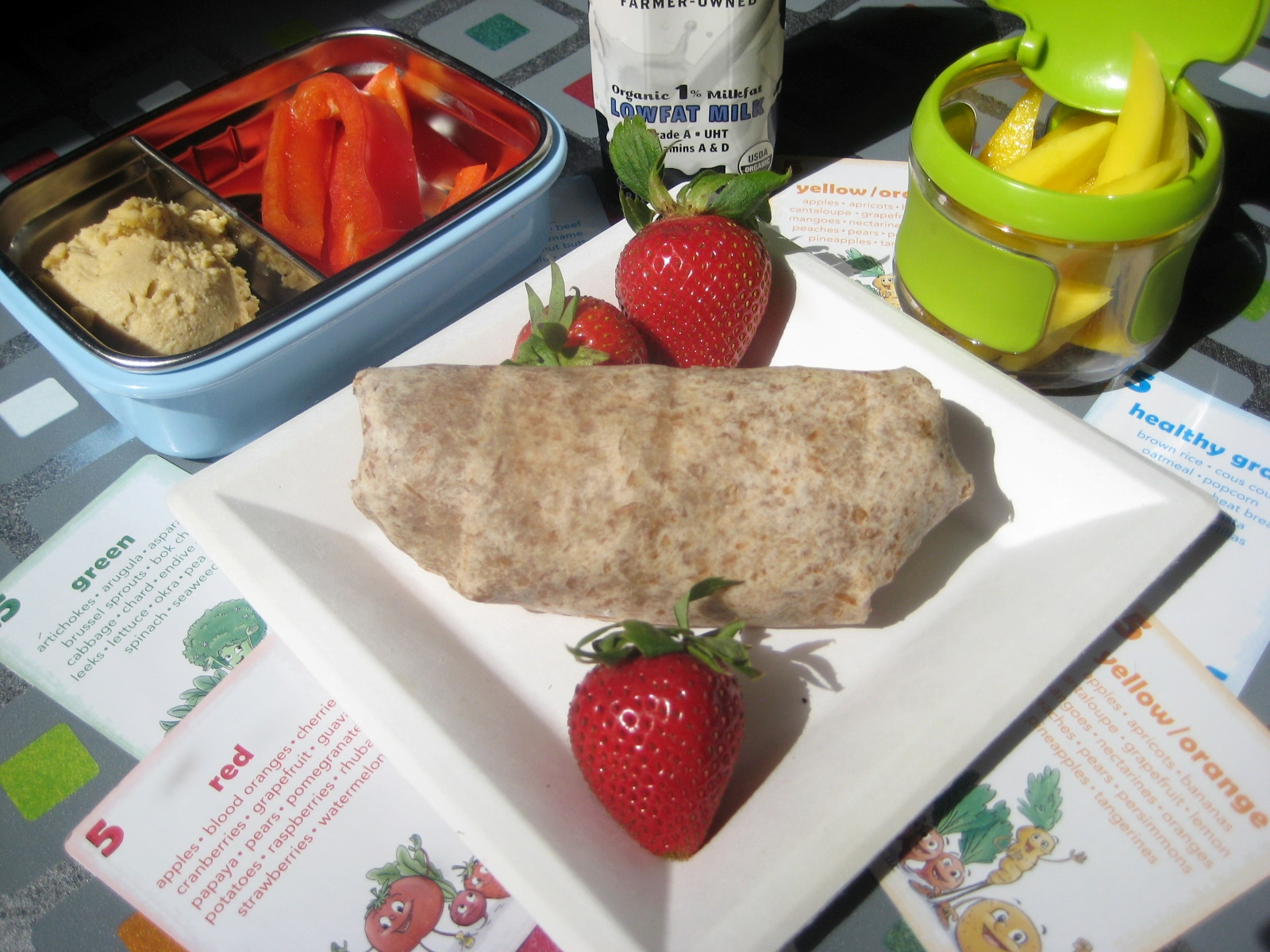 are school lunches actually healthy essay The policy discussion surrounding the new law centered on the underlying health  reasons for offering more nutritious school lunches,.